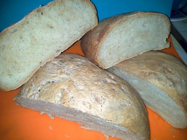 pane con pasta madre liquida